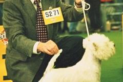 Bingo-Bdsjgd.-Sieger-1997