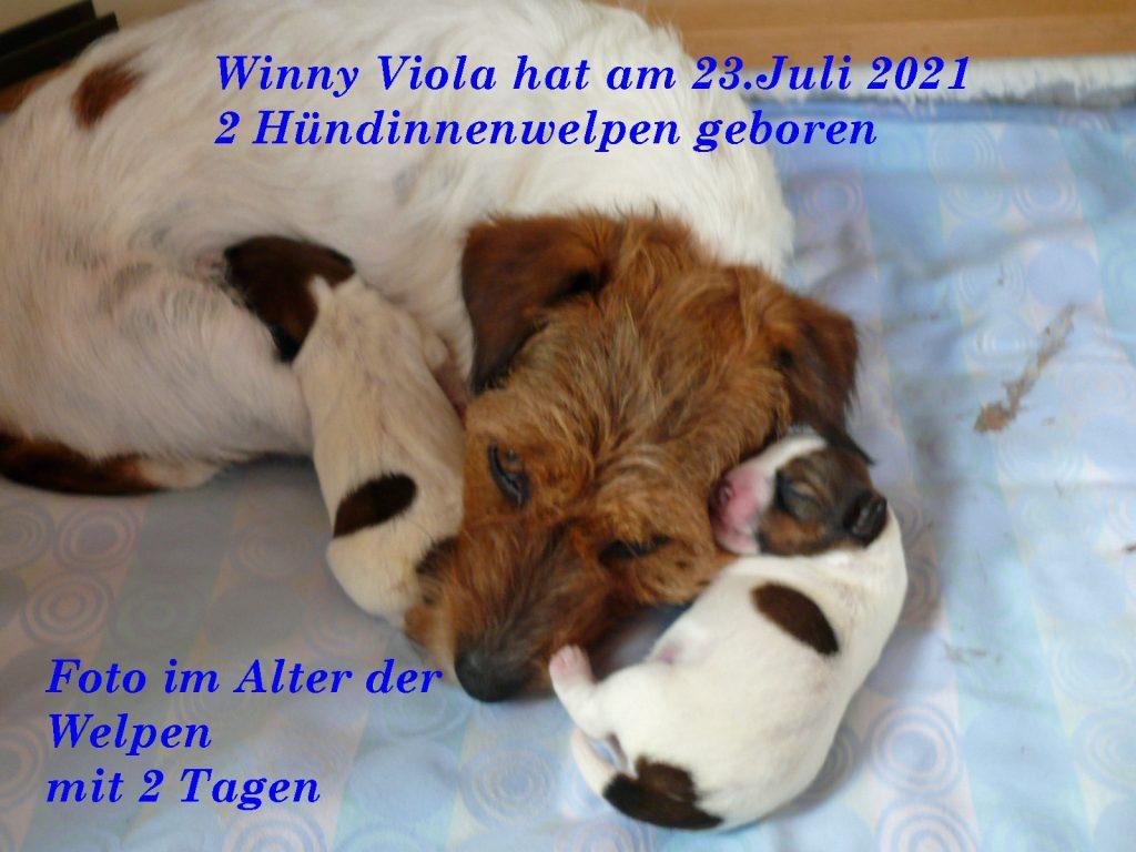 Winny Viola hat am 23.07.2021 2 Mädchen zu Welt gebracht